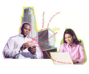 Avaya IP Office 8.1