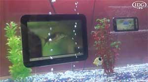 Fujitsu presume de movilidad en el MWC 2012