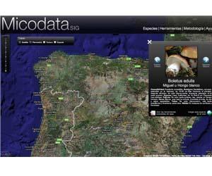 GIS setas silvestres Micodata