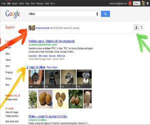 Google+  búsquedas sociales